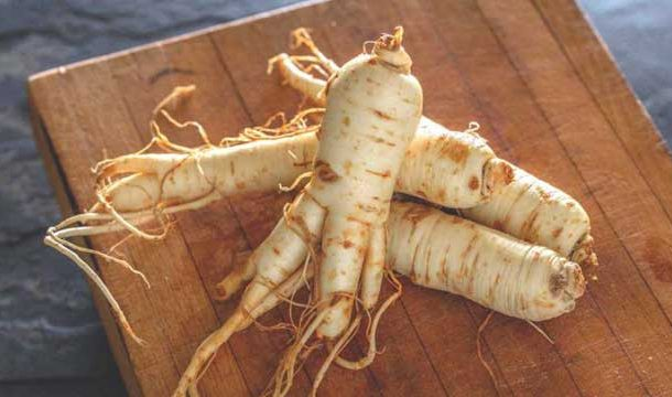 Ginseng: An Anti-aging Root