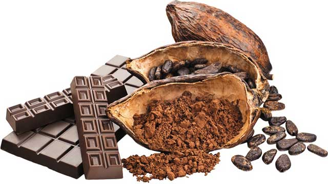 Candida and Blastobotrys Species: Starter Culture to Ferment Cocoa Beans