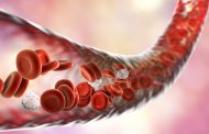 Nut Grass Restrains The Formation of New Cancerous Blood Vessels