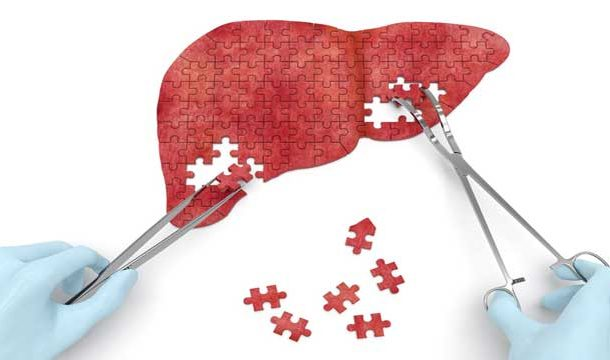 Therapeutic Effect of Exosomes on Liver Injury