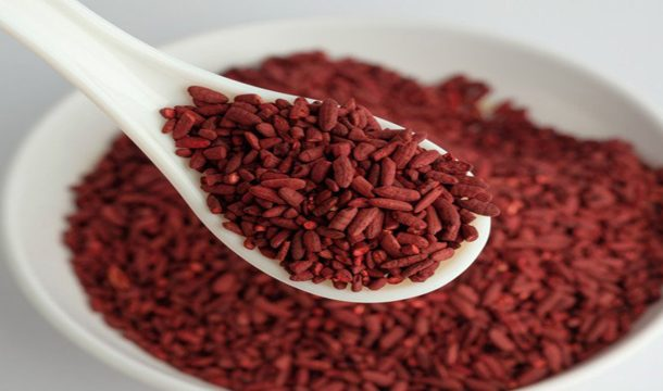 Red Yeast Rice: A Potential Source of Exogenous Antioxidants