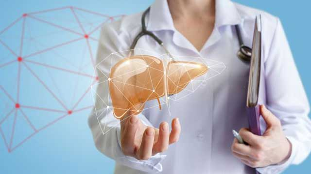 Effects of Two Tumor Causing Factors in Liver