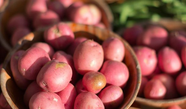 Agronomic performance of Local Varieties of Potato in a Protected Area