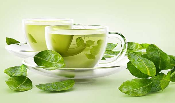 Can Green Tea Possibly have Memory Restorative Properties?