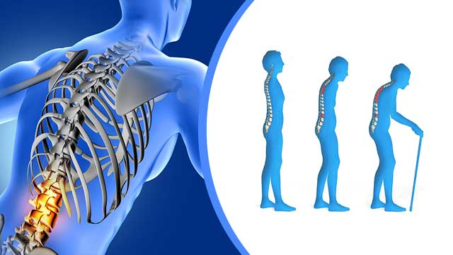Salvianolic Acid B from Red Sage Can Cure Primary Osteoporosis