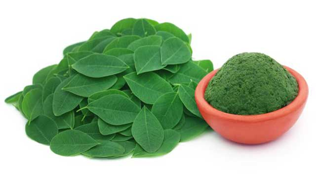 Protective Effects of Moringa Leaves against Liver