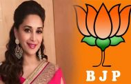 Madhuri Will not Contest Election