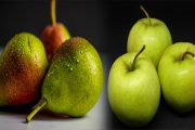 NEW Varieties of Apple and Pear in Wales