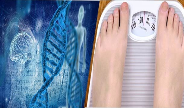 Skinny Genes Can be Considered as The Secret to Staying Slim