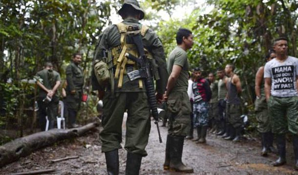 Colombia: Top FARC Rebels' Leader Killed in Military Operation