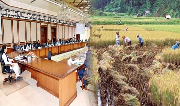 Govt Approves 290 billion Rupees For Agriculture Emergency Programme
