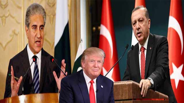 Pakistan, Turkey Condemn US Recognition of Golan Heights