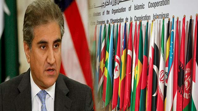 OIC Resolution Endorsed Pakistan's Stance on Kashmir: FM