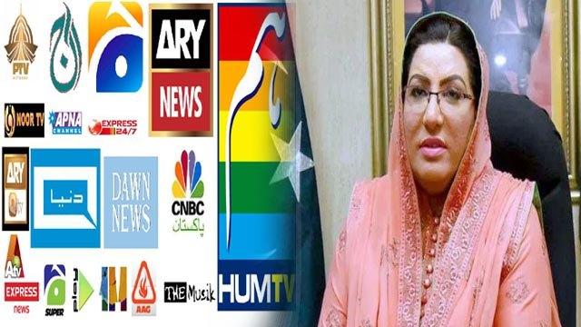 Steps Being Taken to Resolve Issues of Media Industry: Dr Firdous