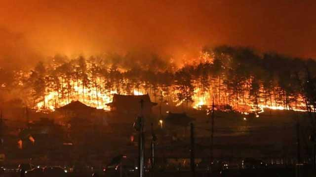 S. Korea Declares Emergency After Massive Fire Erupt