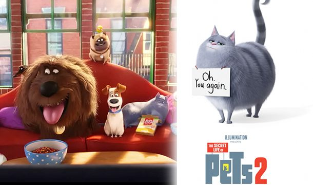The Secret Life of Pets 2' Trailer Will Take You Into The World of Pets