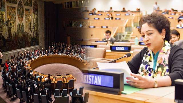 Pakistan Urges To Show Flexibility in Reforming UNSC