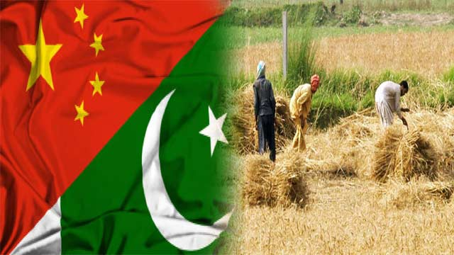 Pak- China to Finalize Agriculture Agreements Soon: Qureshi
