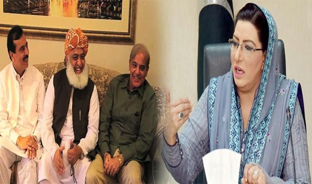 Opposition Protecting Self Interests Through APC: Firdous Ashiq