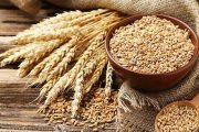 FBR Waived W.H Tax from 300,000-Tonne Wheat Import