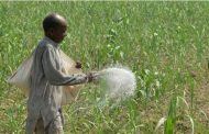 Govt, Fertilizer Industry Agree to Increase Prices