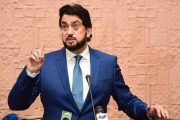 Pak-Afghan Now United, No Power can Separate them: Shehryar Khan