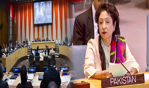 Ambassador 'Maleeha Lodhi' Elected as Vice-President of a Key UN Body