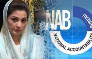 When NAB Started Investigation in Chaudhry Sugar Mills Case?