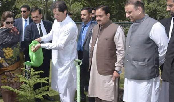 Billion Tree Tsunami Project: PM Imran Khan Wins International Appriciation