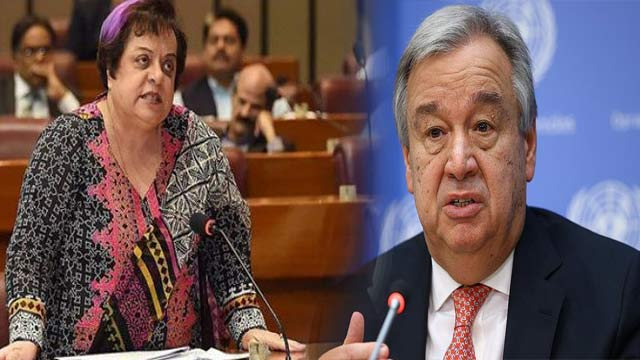 Shireen Mazari Asks UN to Form Inquiry Commission on Kashmir Issue
