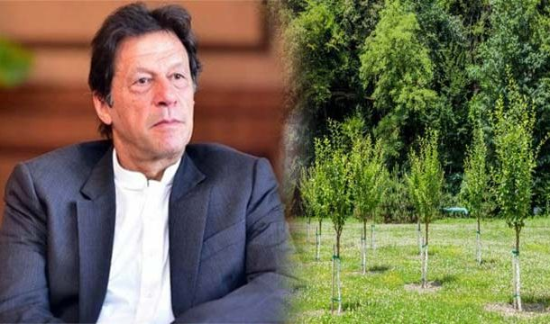Pakistan Plans to Plant 10 billion Trees in Next 5 Years: PM