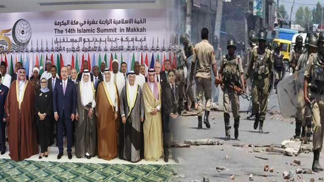 OIC Urges India To Restore Kashmir's Special Status