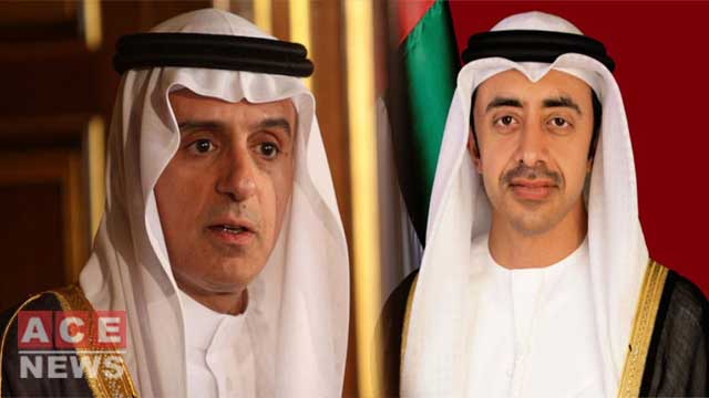 Saudi, UAE FMs Discuss Kashmir Tensions With Pakistan's Top Leadership