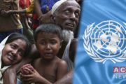Rohingya Continue to Face Genocide Threat in Myanmar: UN