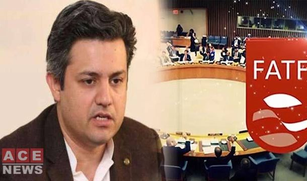 Pakistan will Come Out of Grey List in 2020: Hammad Azhar