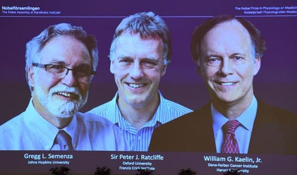 3 Scholars Win Nobel Prize For New Discovery In Medicine