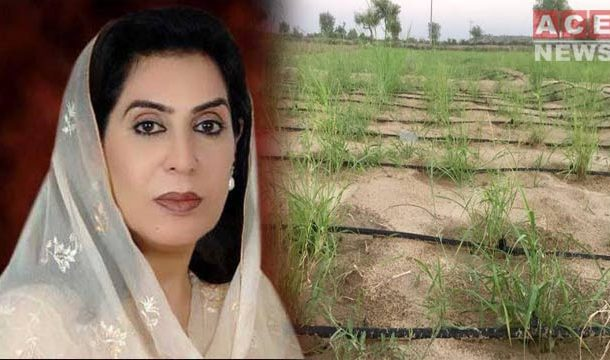 Land Mafia Occupies Agricultural Land Of Federal Minister, Others