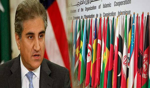 FM Qureshi Meets Chief of Organization of Islamic Countries