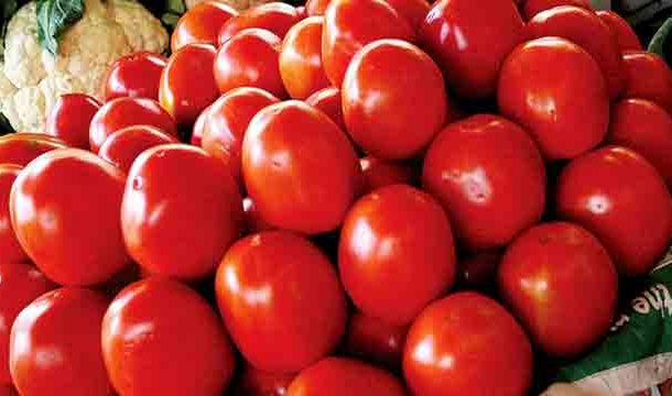 Tomato Prices Complete Triple Century, Reach Record High in History