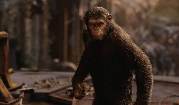 Planet of The Apes Back in Action?