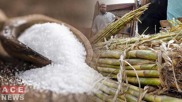 Why sugar mills in Punjab halted production?