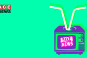TV Media: Fake News On Demand