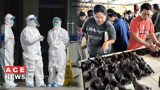 Coronavirus and China's Despicable Food Industry