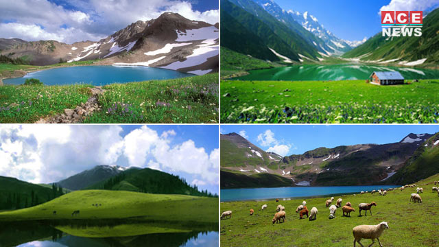 Deosai-The Hub of Biodiversity that Still Needs to be Explored