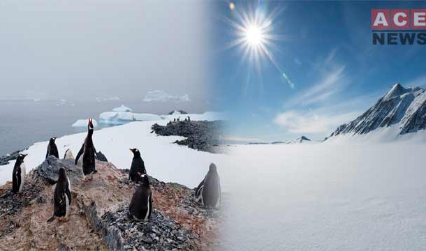 The Hottest Day in Antarctica in History