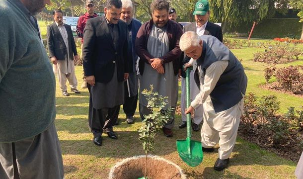 KPK CM Launches Spring Tree Plantation Campaign in Peshawar
