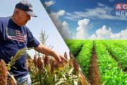 American Farmers Hit Hard by Coronavirus Outbreak