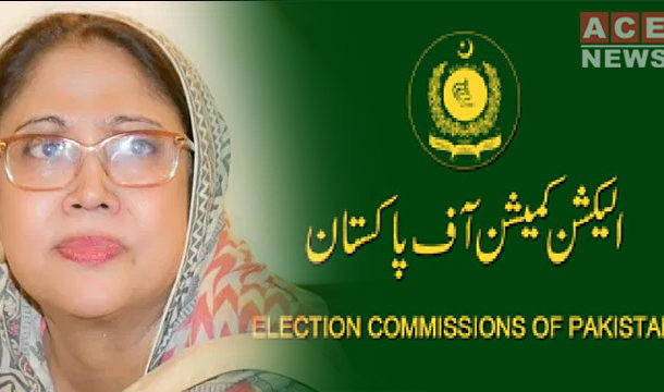 ECP to Hear Faryal Talpur Disqualification Case on June 4