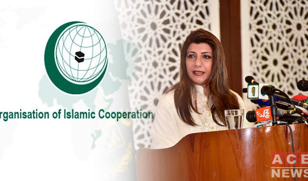 Pakistan Welcomes OIC Reaction to India's Controversial Kashmir Residency Law