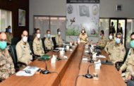 Locust Threat: Army to Support Civil Administration